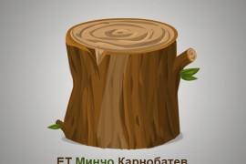 Дървен материал от ЕТ Минчо Карнобатев