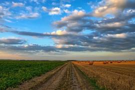 Изкупуване на земеделска земя