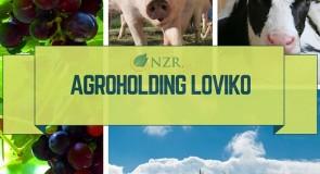 Агрохолдинг Ловико АД