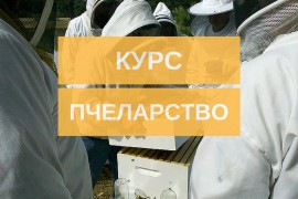 Курс по пчеларство