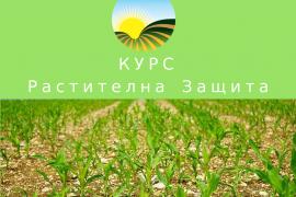Курс по Растителна защита – БАБХ на основание чл. 83