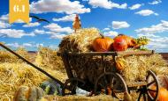 Мярка 6.1 – помощ за млад земеделски стопанин 2017 г.