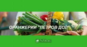 Оранжерии Петров дол ООД