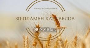 Земеделски производител Пламен Каравелов